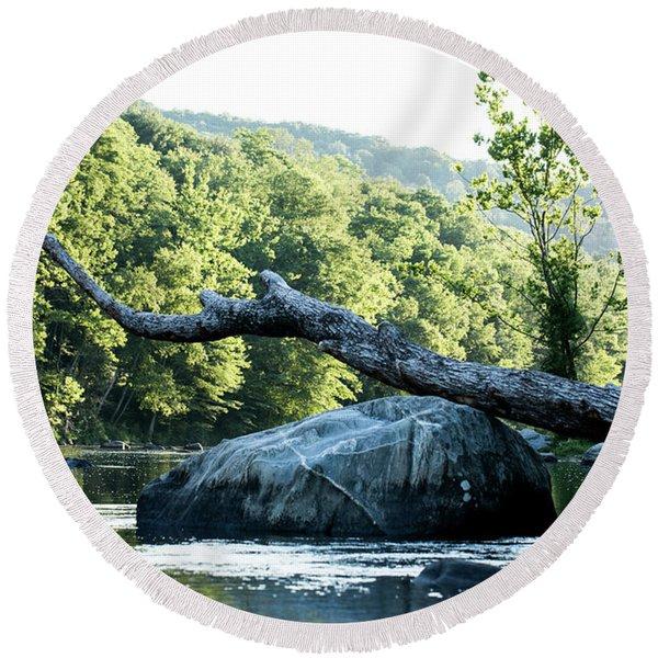 River Tree Round Beach Towel