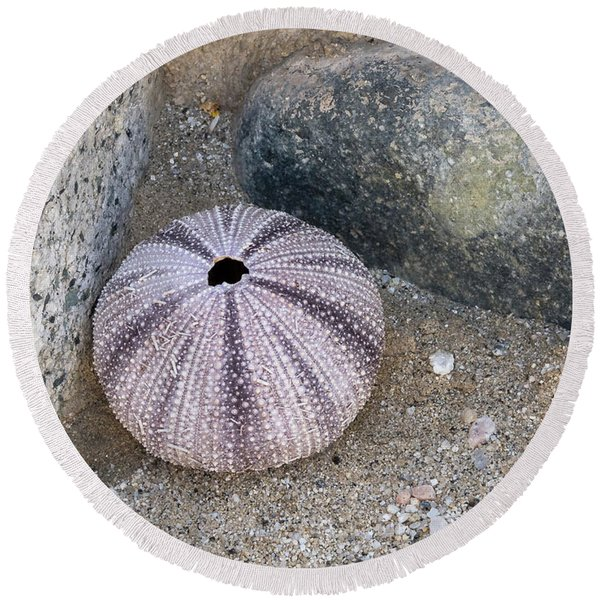 Sea Urchin Corner Round Beach Towel