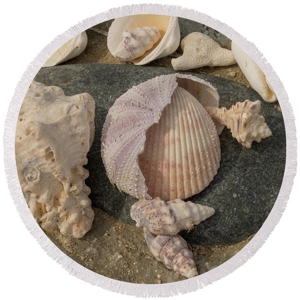 Shell Collection Round Beach Towel