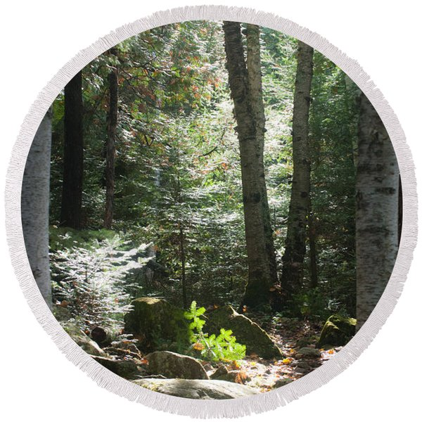 Round Beach Towel featuring the photograph The Living Forest by Carl Young
