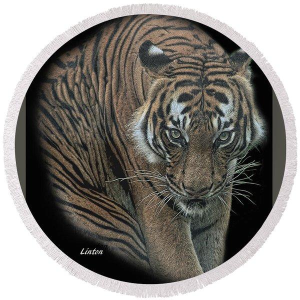 Tiger 6 Round Beach Towel