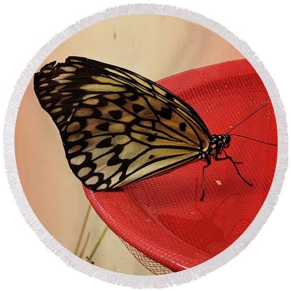 Torn Butterfly Round Beach Towel