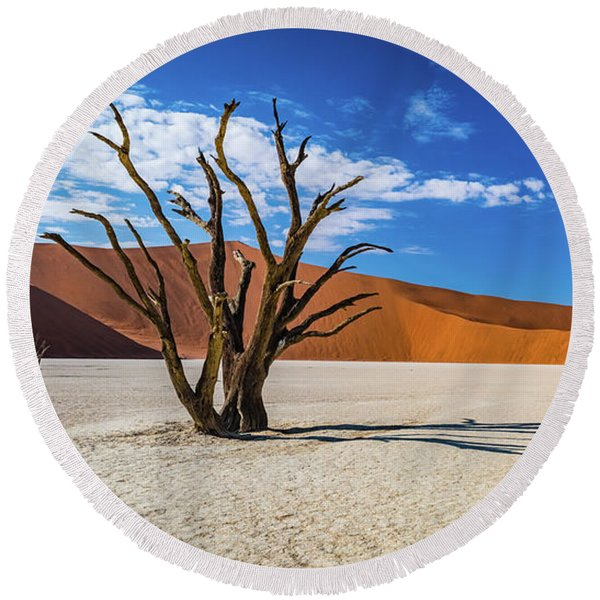 Tree And Shadow In Deadvlei, Namibia Round Beach Towel