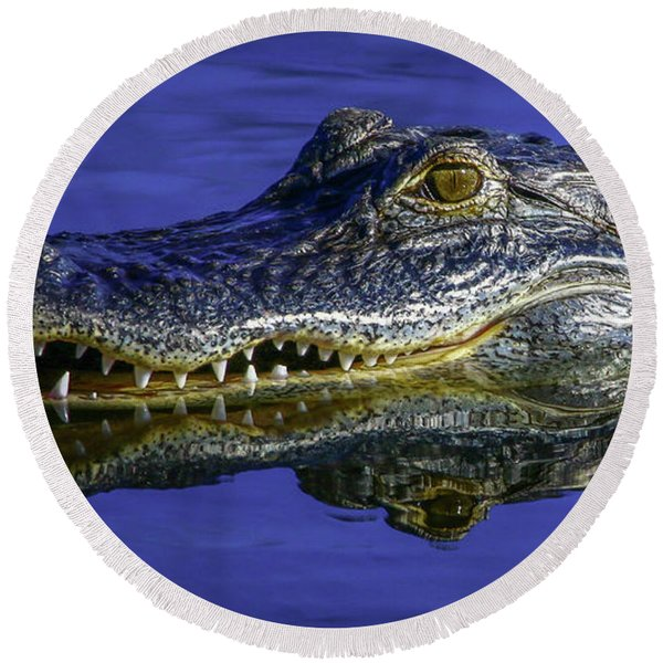 Wetlands Gator Close-up Round Beach Towel
