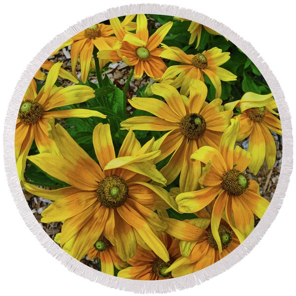 Yellow In Bloom Round Beach Towel