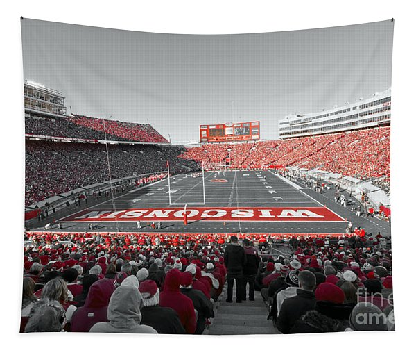 0096 Badger Football Tapestry