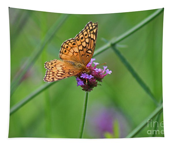 Variegated Fritillary Butterfly In Field Tapestry