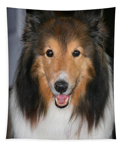 A Dog Named Beau Tapestry