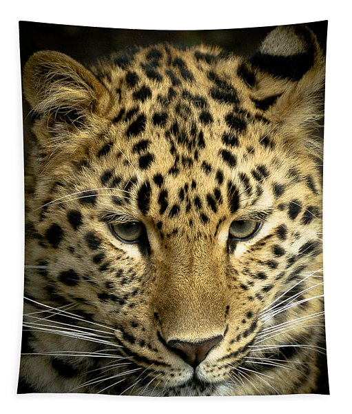 Amur Leopard Tapestry