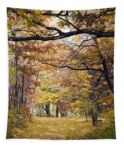 Autumn Pedestrian Path Tapestry