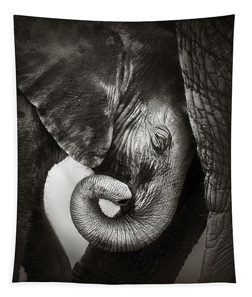 Baby Elephant Seeking Comfort Tapestry