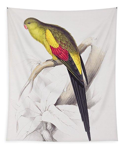 Black Tailed Parakeet Tapestry