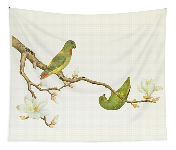 Blue Crowned Parakeet Hannging On A Magnolia Branch Tapestry