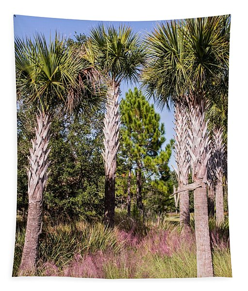 Cabbage Palm Tapestry