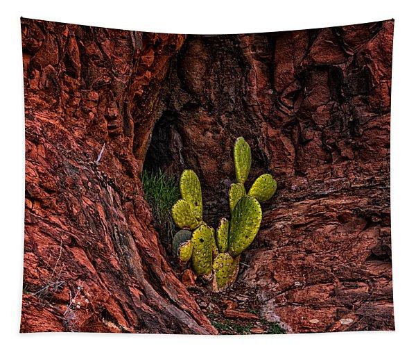 Cactus Dwelling Tapestry