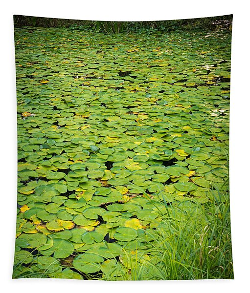 Caldwell Lily Pond Chicago Il Tapestry