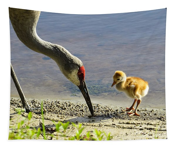 Chick At The Lake Tapestry