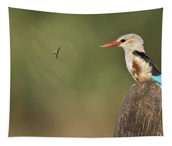 Close-up Of A Grey-headed Kingfisher Tapestry