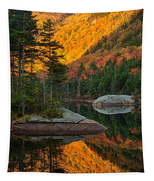 Dawns Foliage Reflection Tapestry