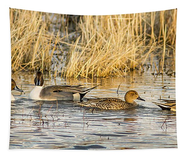 Ducks In A Row Tapestry