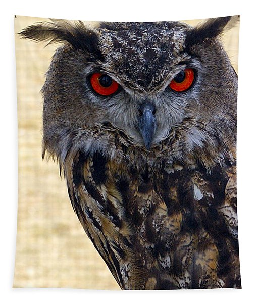 Eagle Owl Tapestry
