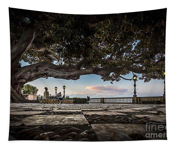 Ficus Magnonioide In The Alameda De Apodaca Cadiz Spain Tapestry