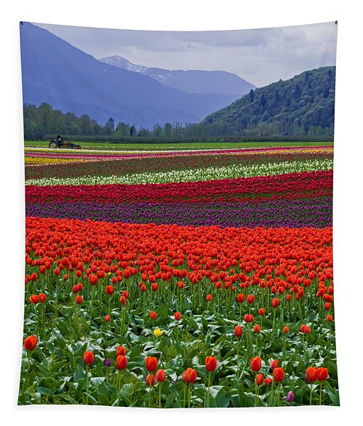 Field Of Tulips Tapestry