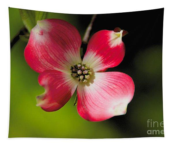 Fruit Tree Flower Tapestry