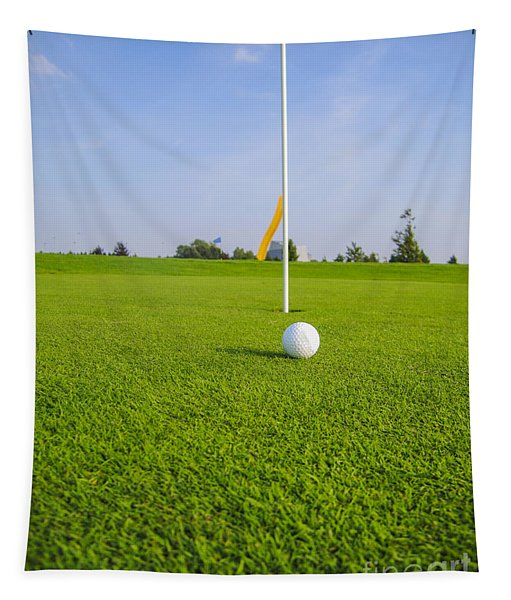 Golf Ball Near The Hole Tapestry
