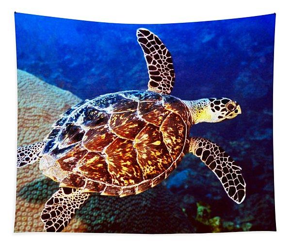 Hawksbill Tapestry