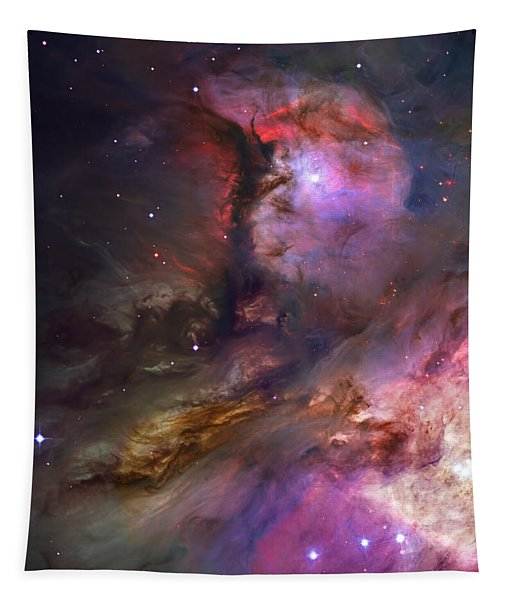 Inside Orion Tapestry