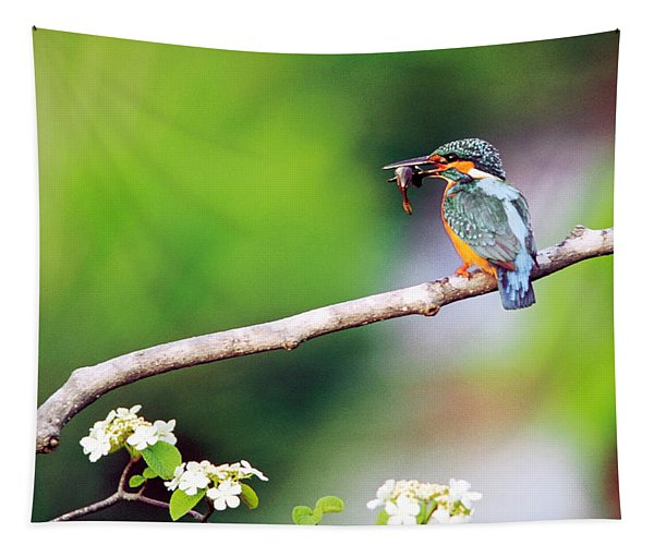 Kingfisher Holding Fish In Beak Perched Tapestry