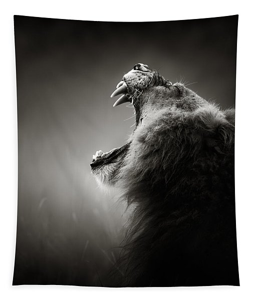 Lion Displaying Dangerous Teeth Tapestry