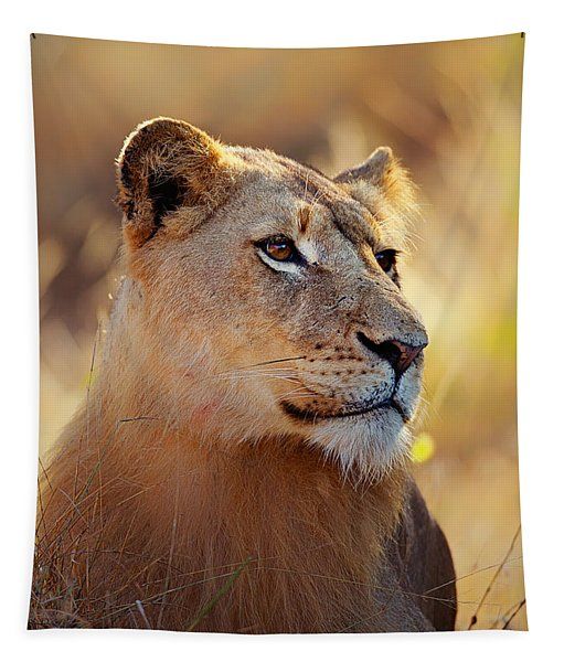 Lioness Portrait Lying In Grass Tapestry