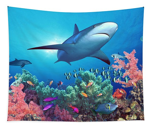 Low Angle View Of A Shark Swimming Tapestry