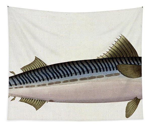 Mackerel Tapestry