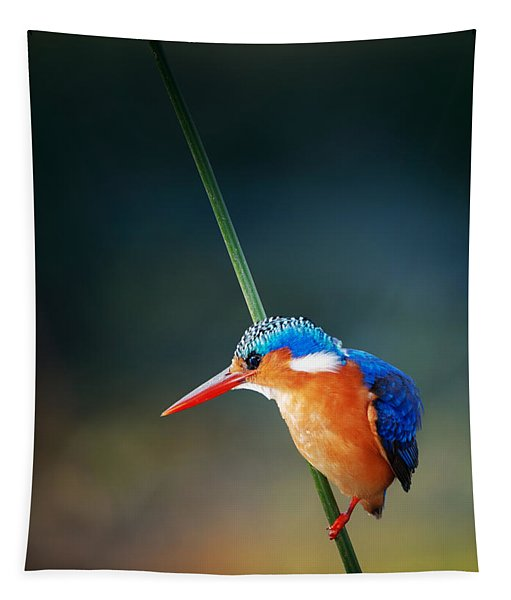 Malachite Kingfisher Tapestry
