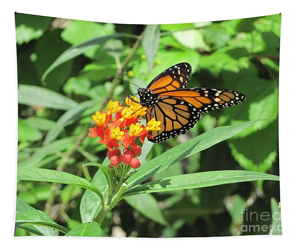 Monarch At Rest Tapestry