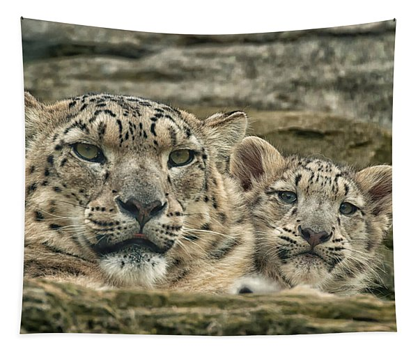 Mother And Cub Tapestry
