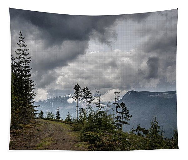 Mountain High Back Roads Tapestry