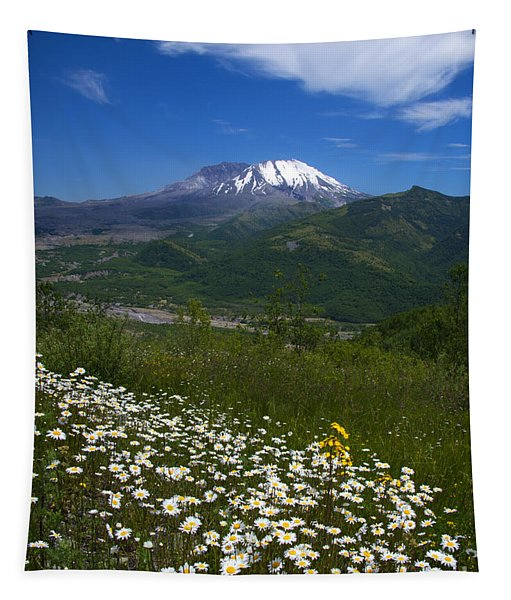 Mt. St. Helens View Tapestry