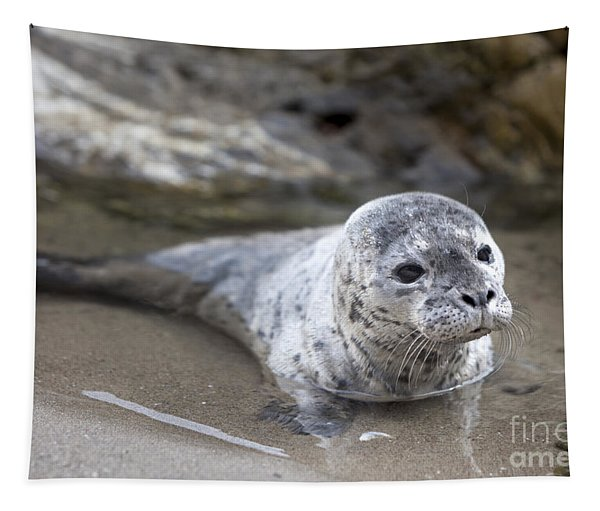 Out For A Swim Tapestry
