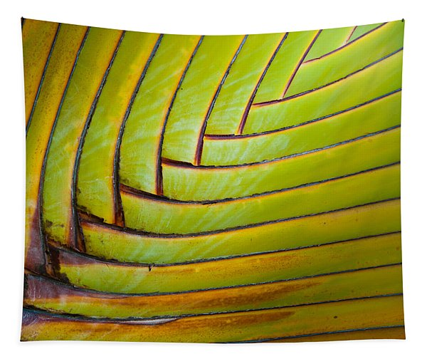 Palm Tree Leafs Tapestry