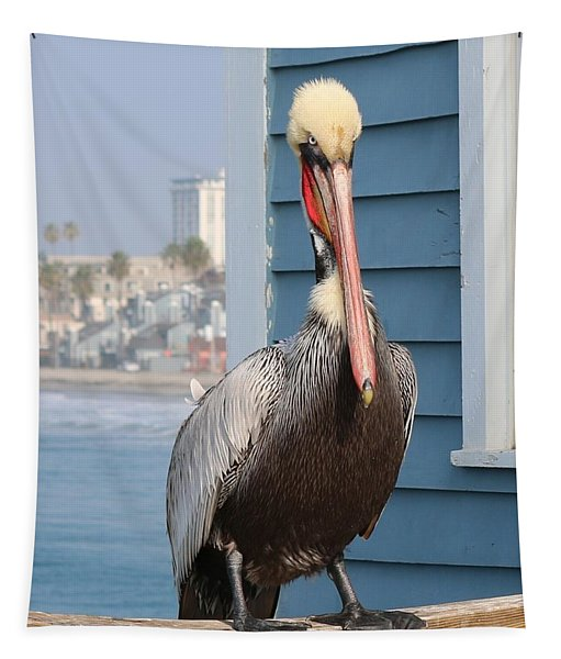 Tapestry featuring the photograph Pelican - 4 by Christy Pooschke