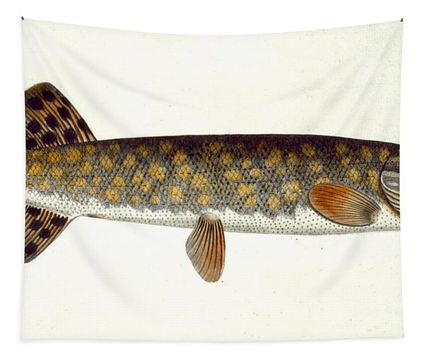 Pike Tapestry