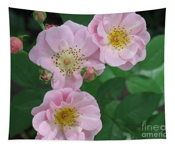 Pink Roses Tapestry