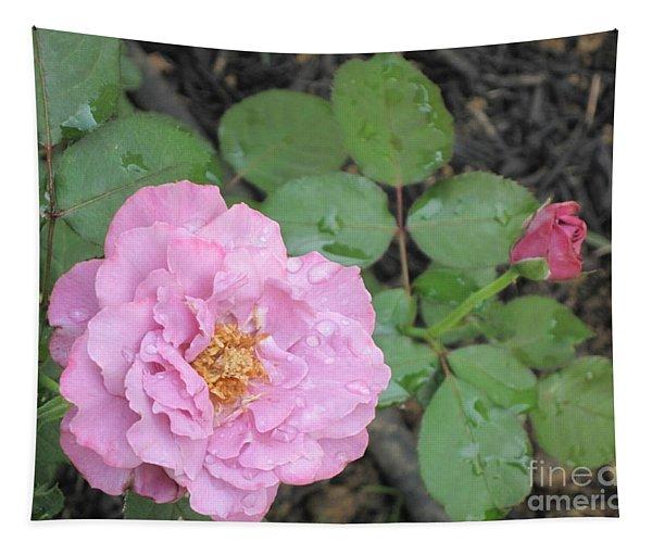 Rain Kissed Rose Tapestry