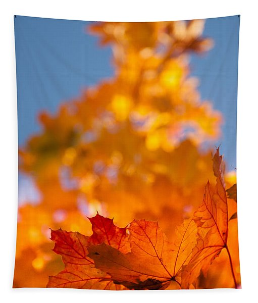 Red Tipped Gold Tapestry