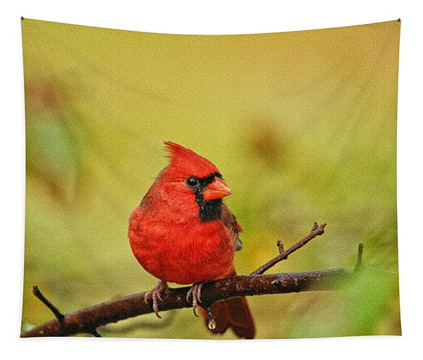 Redbird Tapestry
