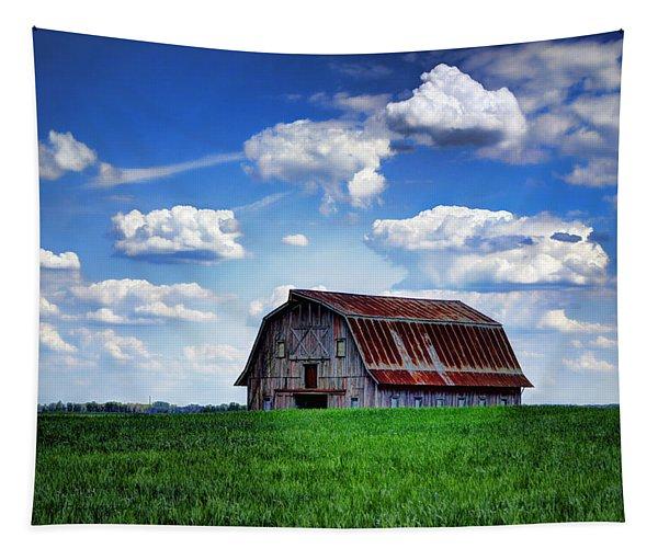 Riverbottom Barn Against The Sky Tapestry